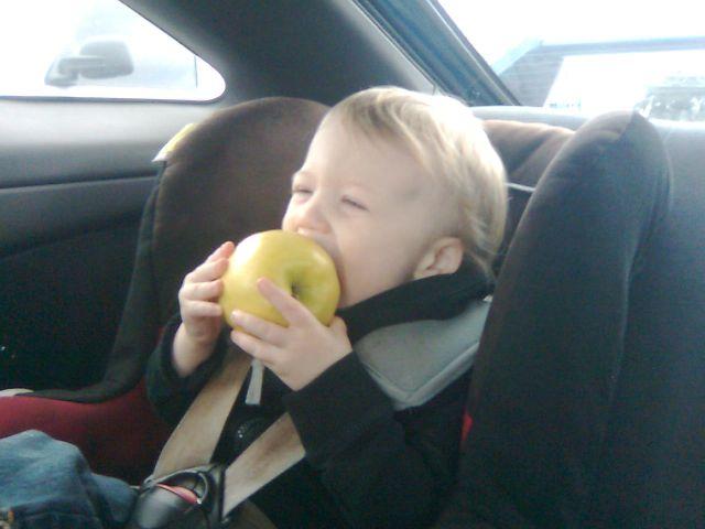 tick-apple1