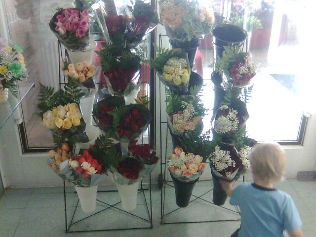 anderson-flowers1